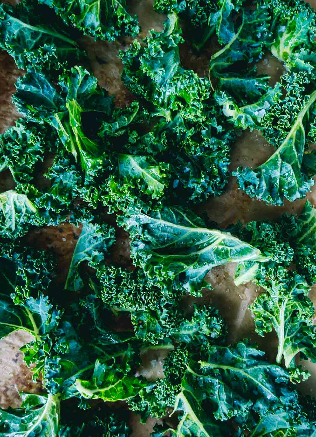 kale chips green